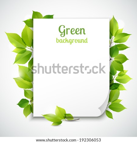 Fresh spring green grass leaves frame template with curling  blank sheet paper design vector illustration - stock vector