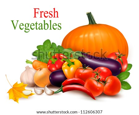 Fresh vegetable with leaves. Healthy Eating. Vector illustration - stock vector