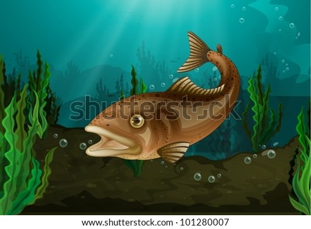 Freshwater fish in underwater habitat - stock vector