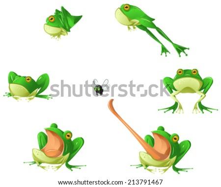Frog cartoon design element set, isolated vector  - stock vector