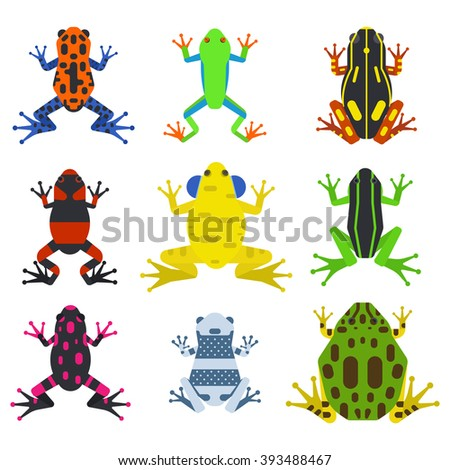 Frog cartoon tropical animal and green frog cartoon nature icons. Funny frog cartoon collection vector illustration. Green, wood, red toxic frogs flat syle isolated on white background - stock vector