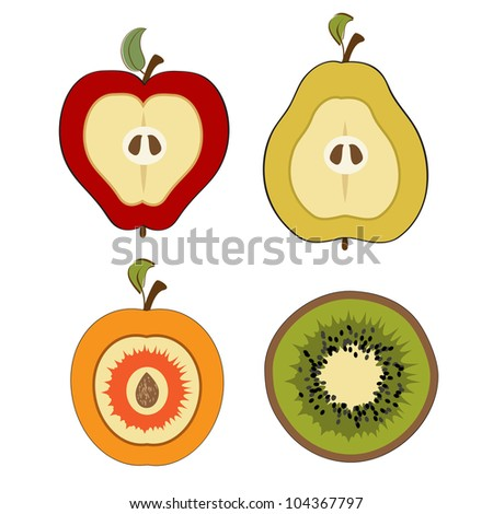 fruit items, cut in half isolated on white background - stock vector