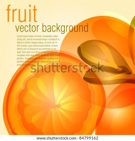 Fruit orange vecor background - stock vector