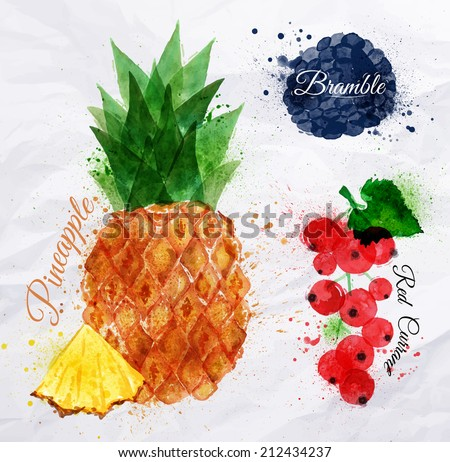 Fruit set drawn watercolor blots and stains with a spray pineapple, bramble, red currant - stock vector