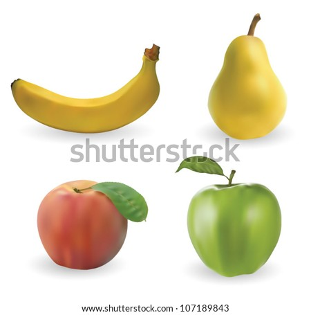 Fruits - stock vector