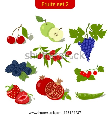 Fruits high detail vector icon set. C?herry, apple, grape, blueberry, dogwood, strawberry, pomegranate, peas, cranberries.  Food collection. - stock vector