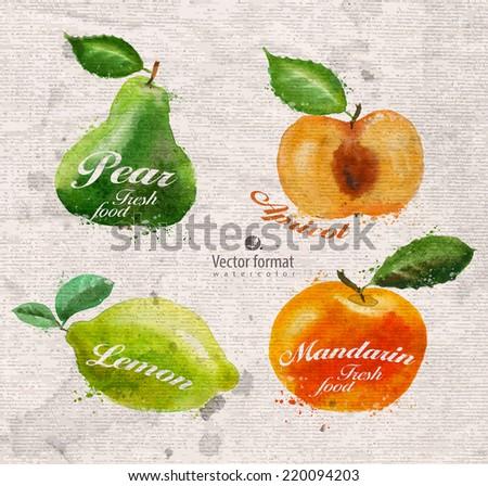 Fruits. Vector format - stock vector