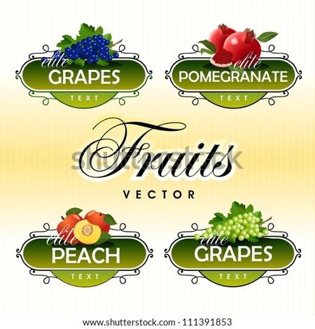 Fruits. Vector. Grapes, pomegranate, peach - stock vector