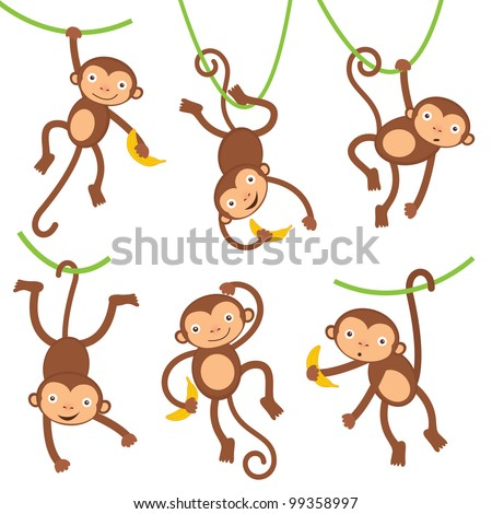 Funny monkeys set - stock vector