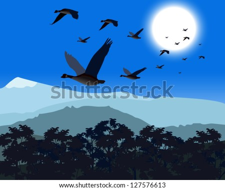 Geese flying low over treetop on cold day/night - stock vector
