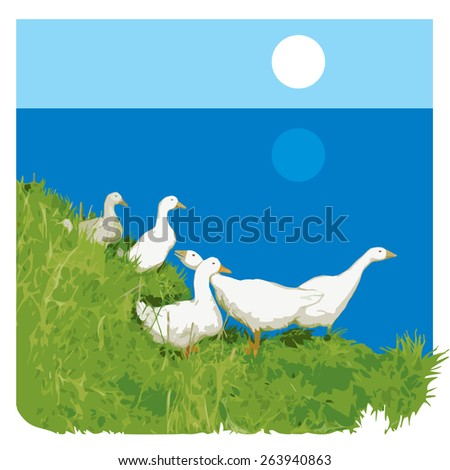 Geese. Vector illustration. 1   - stock vector