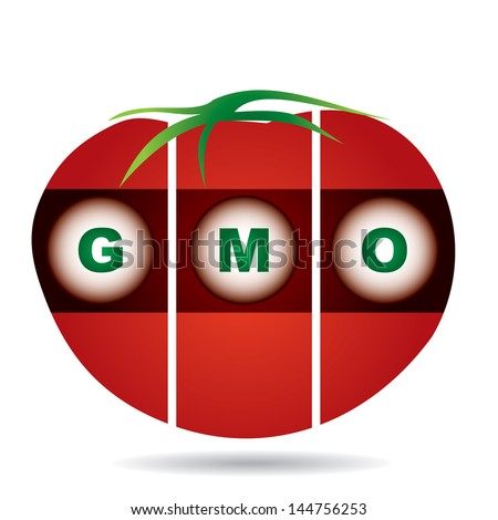 genetically modifies plants, tomato - agricultural concept - stock vector