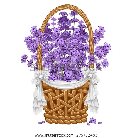 Gentle fragrant lavender in thatch wicker basket.  Vector illustration. Isolated on white background. - stock vector