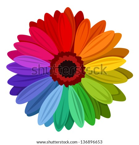 Gerbera flowers with multicolored petals. Vector illustration. - stock vector