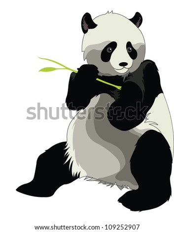 Giant Panda or Ailuropoda melanoleuca, Eating a Bamboo Shoot, vector illustration - stock vector
