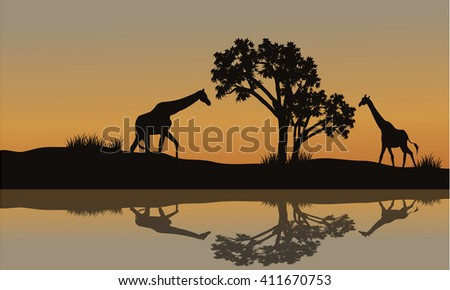 Giraffe at sunset scenery in the riverbank - stock vector