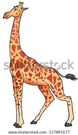 giraffe cartoon - stock vector