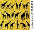 Giraffe detailed silhouettes illustration collection background vector - stock vector