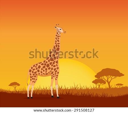 giraffe, vector background  - stock vector