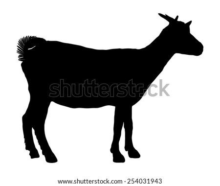 Goat silhouette  - stock vector