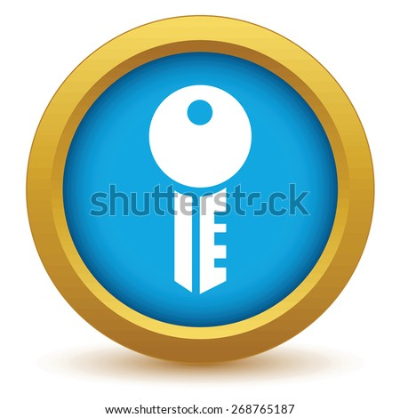 Gold key icon on a white background. Vector illustration - stock vector