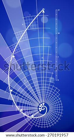 golden ratio blueprint - vector illustration / eps10 - stock vector