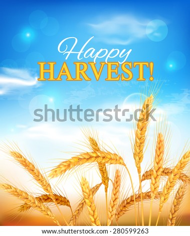 Golden wheat ears and blue sky. Vector illustration. - stock vector