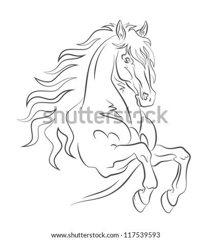 Graceful horse - stock vector