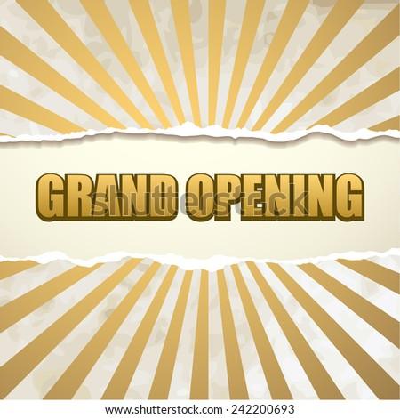 Grand opening banner vector - stock vector