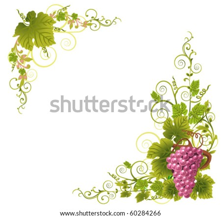 Grapevine Border Stock Photos, Images, & Pictures ...
