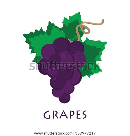 Grapes icon. Grapes wine or grapes juice. Grapes with green leaf isolated. Organic grapes sign. Fruits and vegetables. - stock vector
