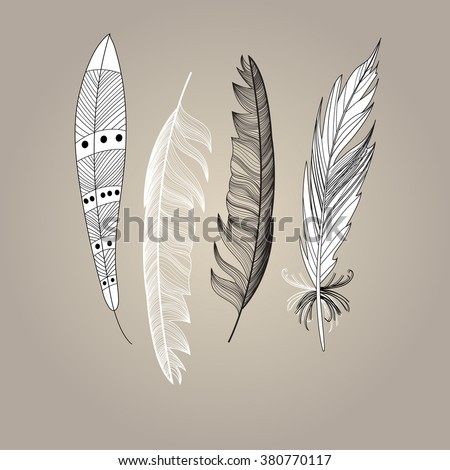 Graphic beautiful set of bird feathers on a brown background. Vector illustration for design.