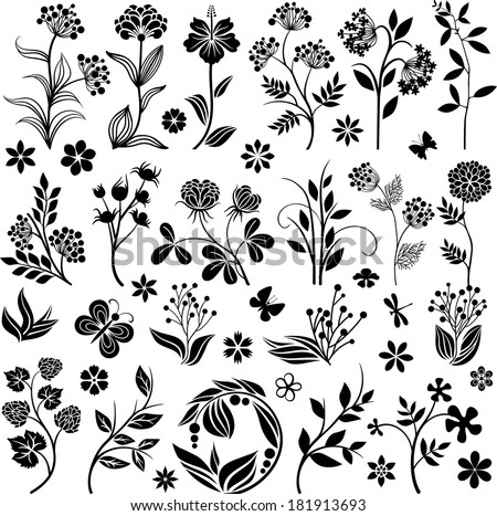 Graphic floral collection - stock vector