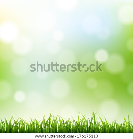 Grass Border With Bokeh Background, Vector Illustration - stock vector