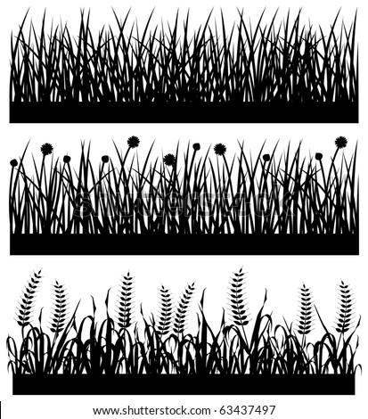 Grass Plant Flower Silhouette - stock vector