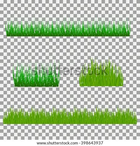 grass, shrubs. A set of various types of grass.  - stock vector