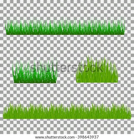 grass, shrubs. A set of various types of grass. Set of grass on a transparent background. Set of grass vector illustration. Green grass and bushes. - stock vector
