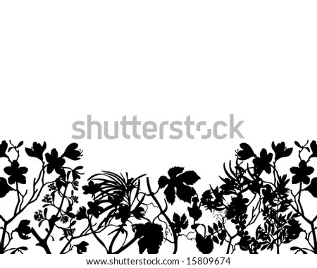 Grass silhouette ornate on the white background - stock vector