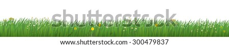 Grass with Flowers - stock vector