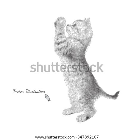 Gray kitten costs on legs. Vector illustration of a cat in black and white graphic style  pointillism - stock vector