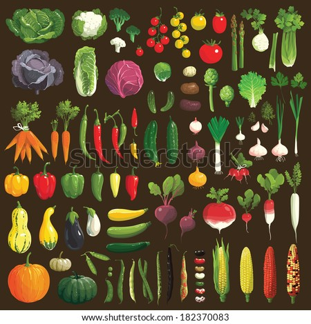 Great collection of the clip art vegetables - stock vector