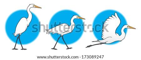 Great Egret - stock vector