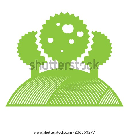 Green apple trees with juicy fruits in the garden - stock vector