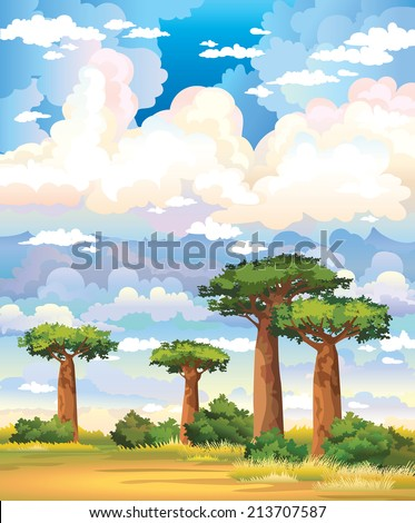 Green baobabs and yellow grass on a blue sky with group of clouds. Natural vector landscape.  - stock vector