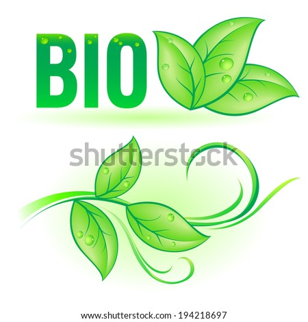 Green Bio word with leaf decorative elements on white background - stock vector