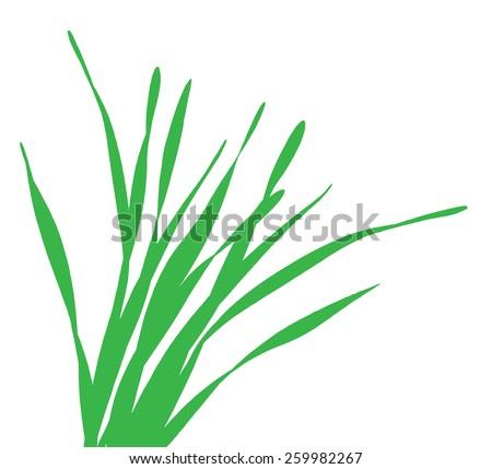 blade of grass vector - photo #5