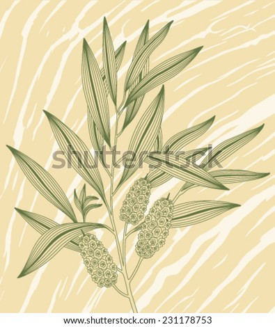 green blooming twig tea tree on a background of the drawing of a tree - stock vector