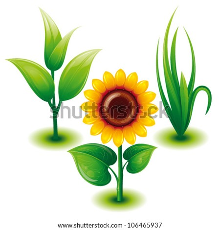 Green Eco Set with Green Grass, Sunflower, Sprout,Vector Illustration - stock vector