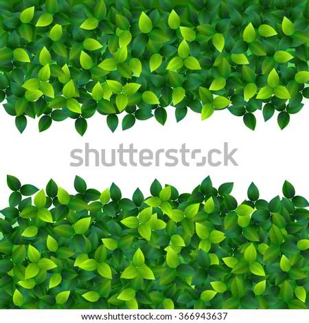green fresh summer leaves vector natural background - stock vector