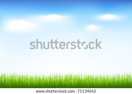 Green Grass And Blue Sky, Vector Illustration - stock vector